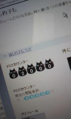 20090118224847.jpg