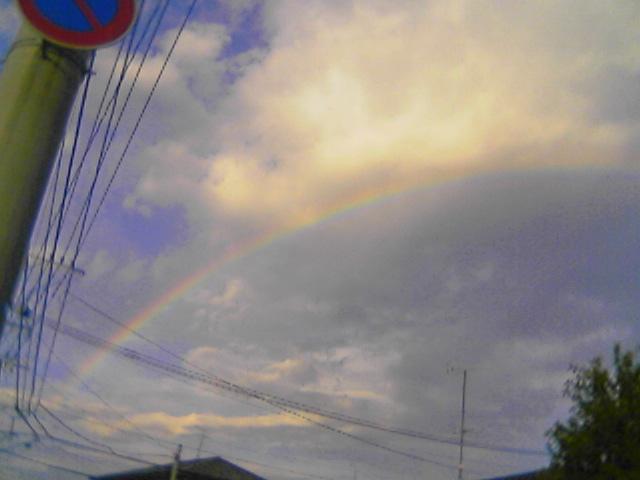 虹をくぐったらニコたんに会えるかな?!