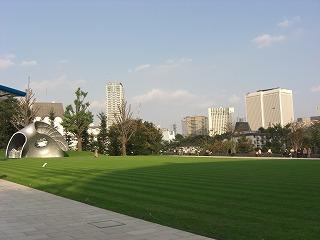 綺麗な芝生