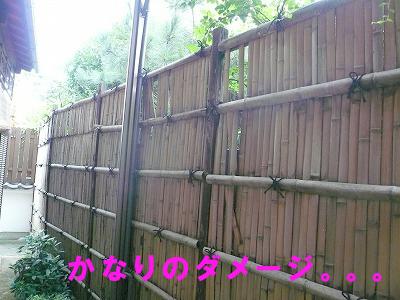 朽ちた竹垣