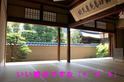 大徳寺龍源院1