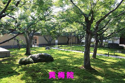 大徳寺黄梅院1
