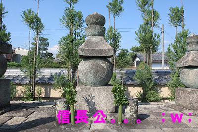 大徳寺総見院2