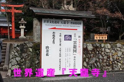 arasiyama2.jpg