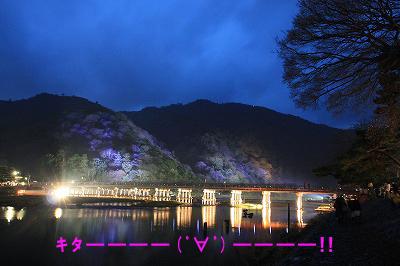 arasiyama8.jpg