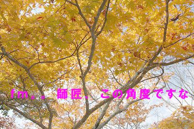 negoro01.jpg