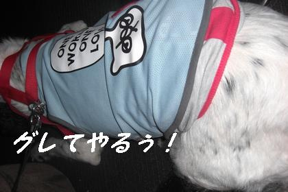 200806 077