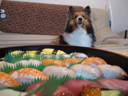 自分達だけ美味しいモノを食べるつもりでつね?!