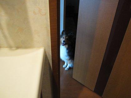 扉の向こうで待ってるでつよーーーっ♪