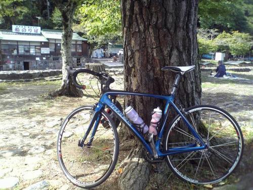 9/27嵐山③