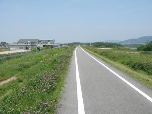 京都八幡木津自転車道②