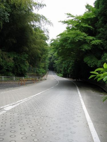 松尾寺付近