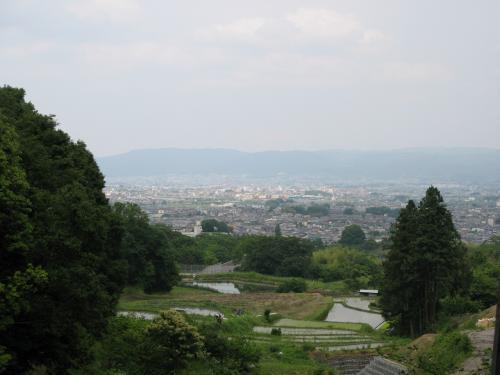 松尾山中腹