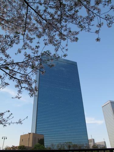 2009_04_11大阪城公園①