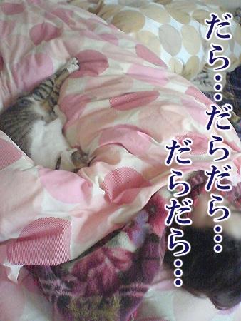 20080611_03.jpg
