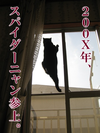20080620_03.jpg