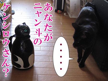 20080624_02.jpg