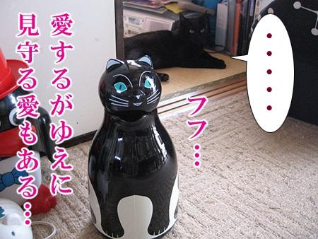 20080624_04.jpg