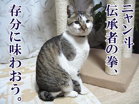 20080731_05.jpg