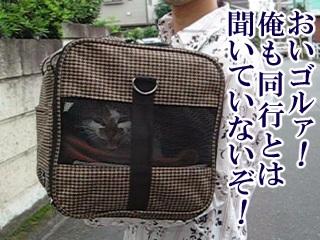 20080915_01.jpg
