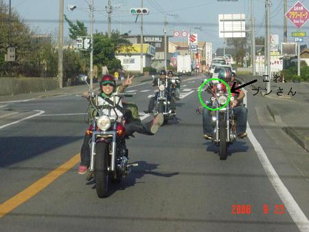 DSC03110(1).jpg