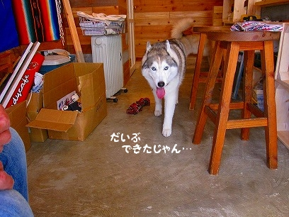 IMG_0009_20090913214622.jpg