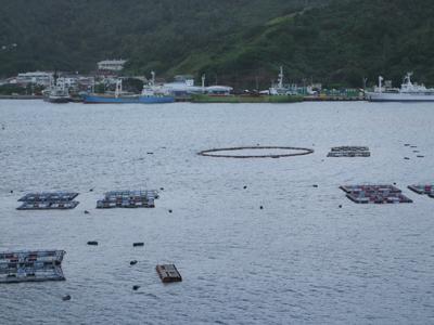 おが丸桟橋1113