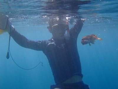泳ぎ釣り1117