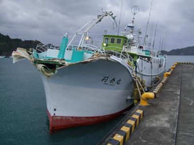 マグロ船1