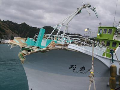 マグロ船3