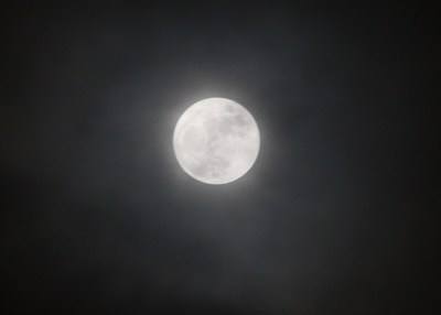 月0409