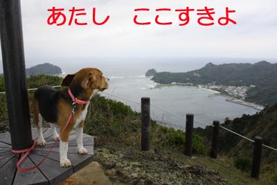 旭山南峰マル2のコピー