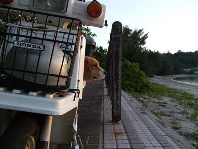 マルバイク0513