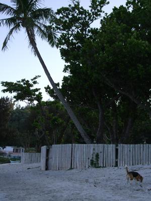 前浜マル05191