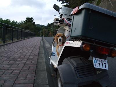 マルバイク05271
