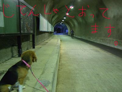 隧道0529