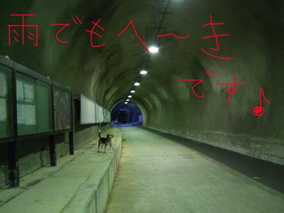 隧道05292