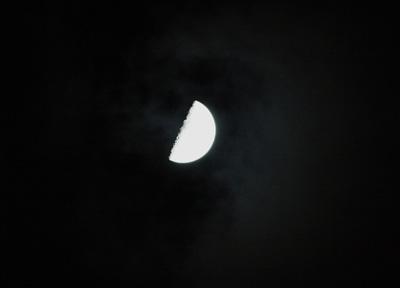 半月0531