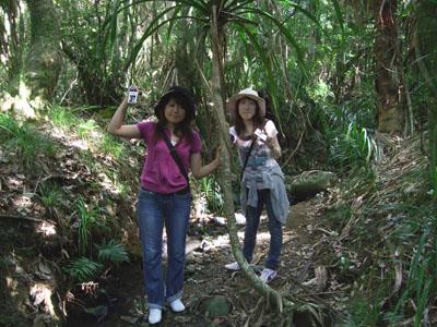 森の中0626