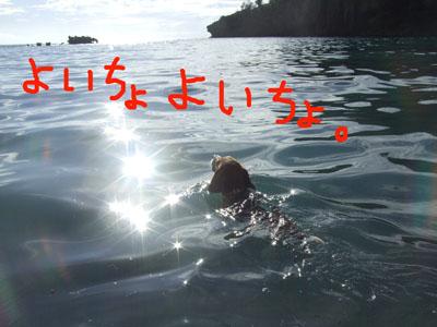 マル浜江丸へ