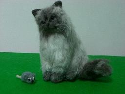羊毛@猫1-2