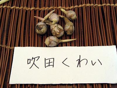 07.11.26浪速魚菜 (6)