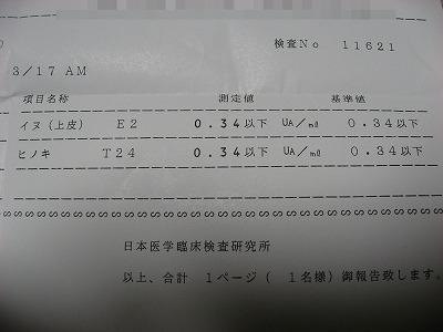 08.03.18 アレルギー血液検査結果3
