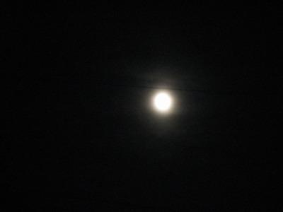 08.09.14 ナダシンの餅(十五夜) (5)