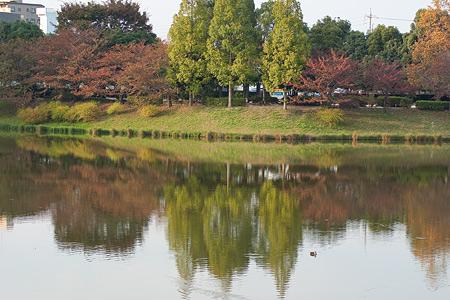 杁ヶ池公園-6