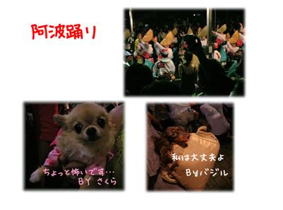 b_20090901205041.jpg
