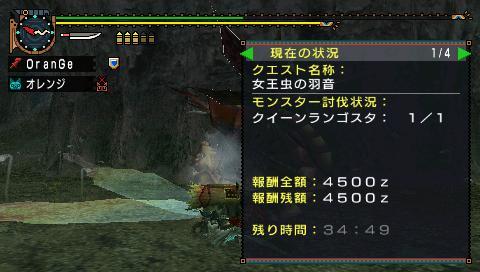 image_0019.jpg