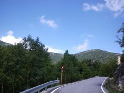 木賊峠と同じような平坦道が続きます 気持ちいい!