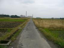 農道かと思ったけど、思いきり道路に自転車マークがありました(笑)。