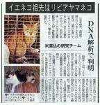 猫の先祖確定